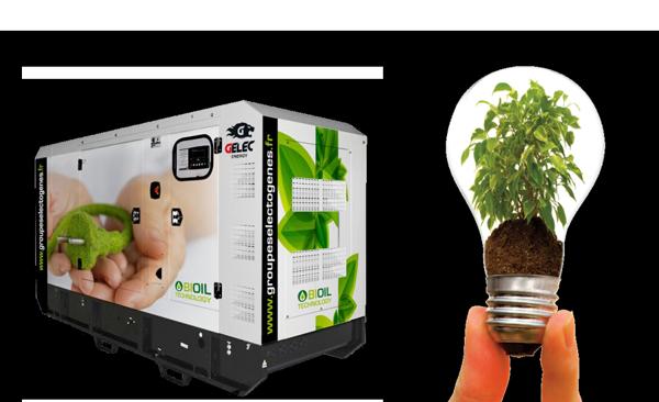 Biofuel genset GELEC Biomass