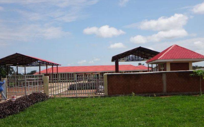 Installation d'un groupe électrogène dans une école en République Démocratique du Congo