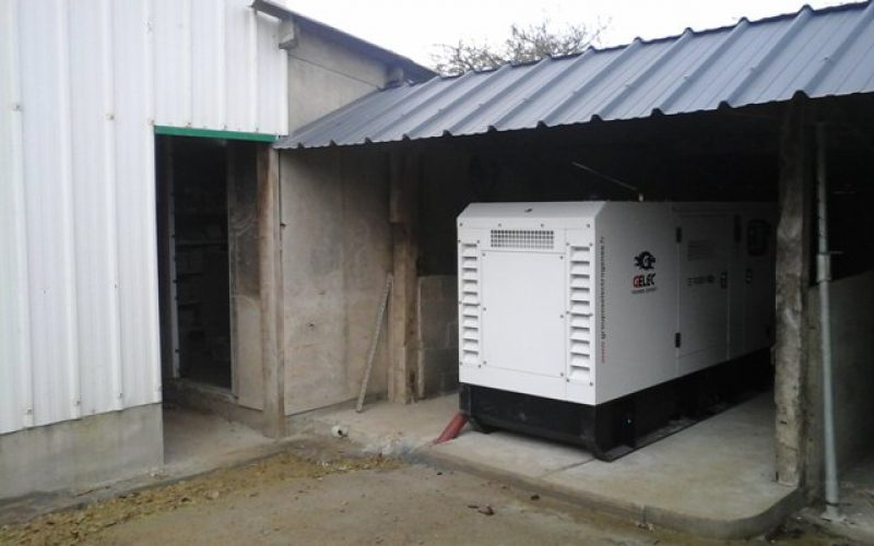 GELEC ENERGY EQUIPS A PIG MATERNITY UNIT WITH A 90 kVA GENERATOR!